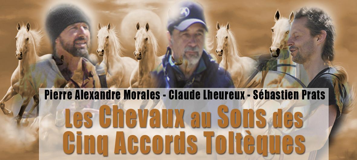 chevaux au son des 5 accords tolteques