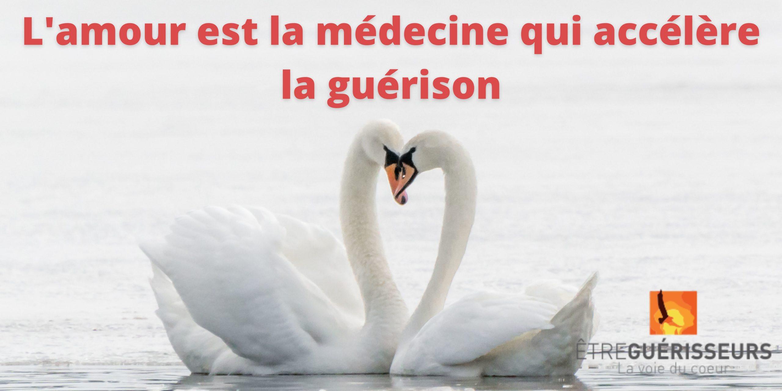 medecine tolteque